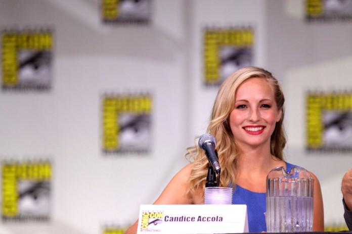 Candice Accola, Fonte Foto: Google
