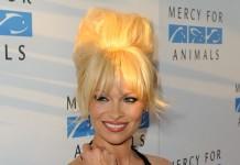 Pamela Anderson, Fonte Foto: Google