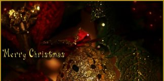 Lockdown a Natale, Lockdown pre natalizio