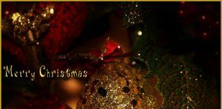 Ogni spostamento, Crisanti contro la riapertura natalizia, Lockdown a Natale, Lockdown pre natalizio